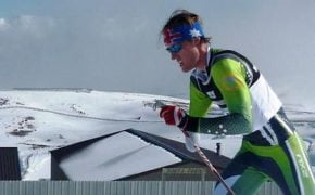Para-cross country skiing