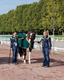 Australian Para-Equestrian Games team