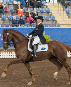 Lisa Martin riding FIRST FAMOUS (M,07,CH,178,GER,RHEIN; Sire/Dam/Dam Sire: Fidertanz/Reverie/; Breeder: N/A; Owner(s): Lisa Martin) in the Advanced Freestyle at the 2014 Sydney CDI*** on 03-05-2014 at Sydney International Equestrian Centre, Horsley Park. Photo: Franz Venhaus