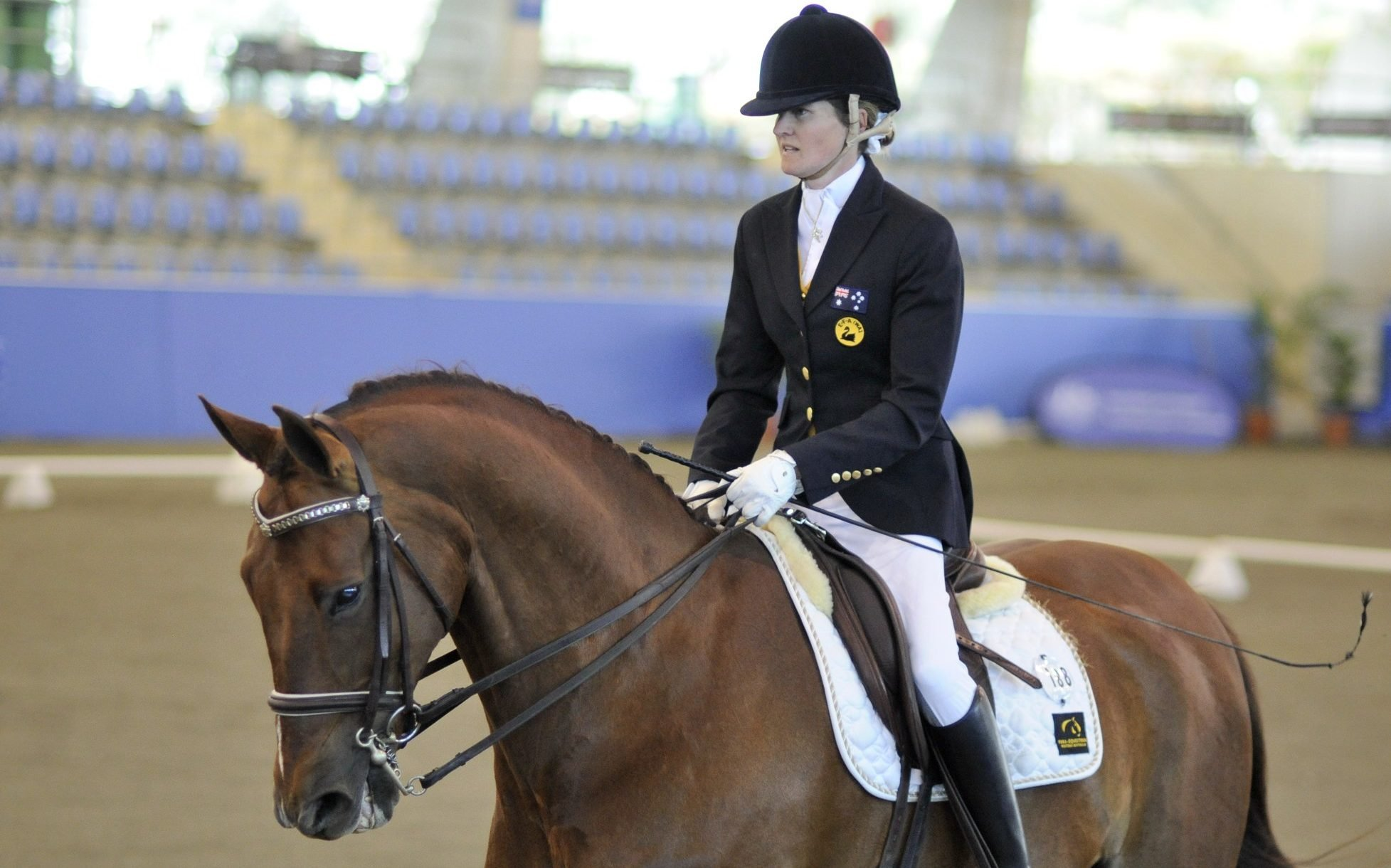 Four named on 2016 Australian Paralympic equestrian team
