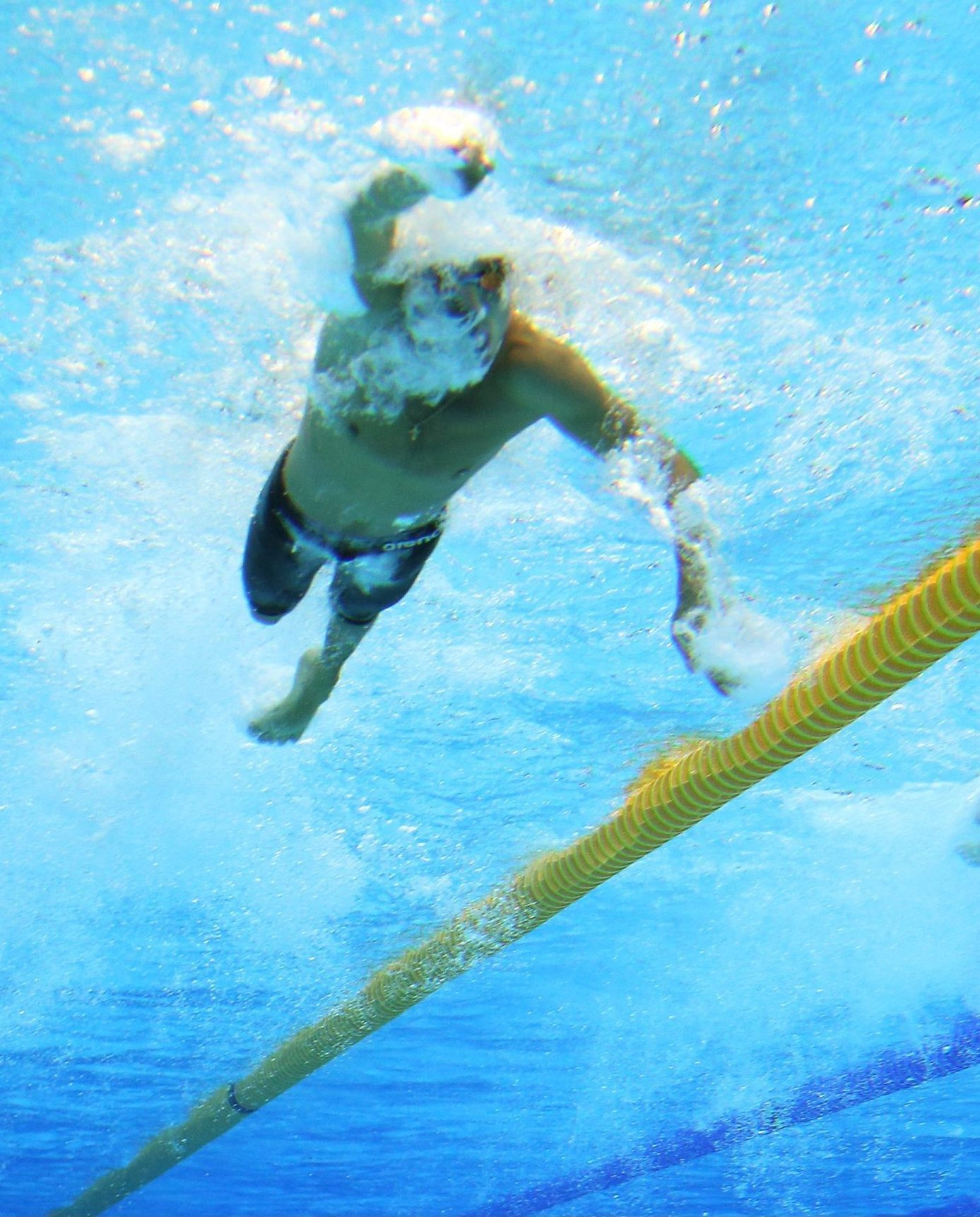 Swimming Australia announces exciting new appointments for Para coaches