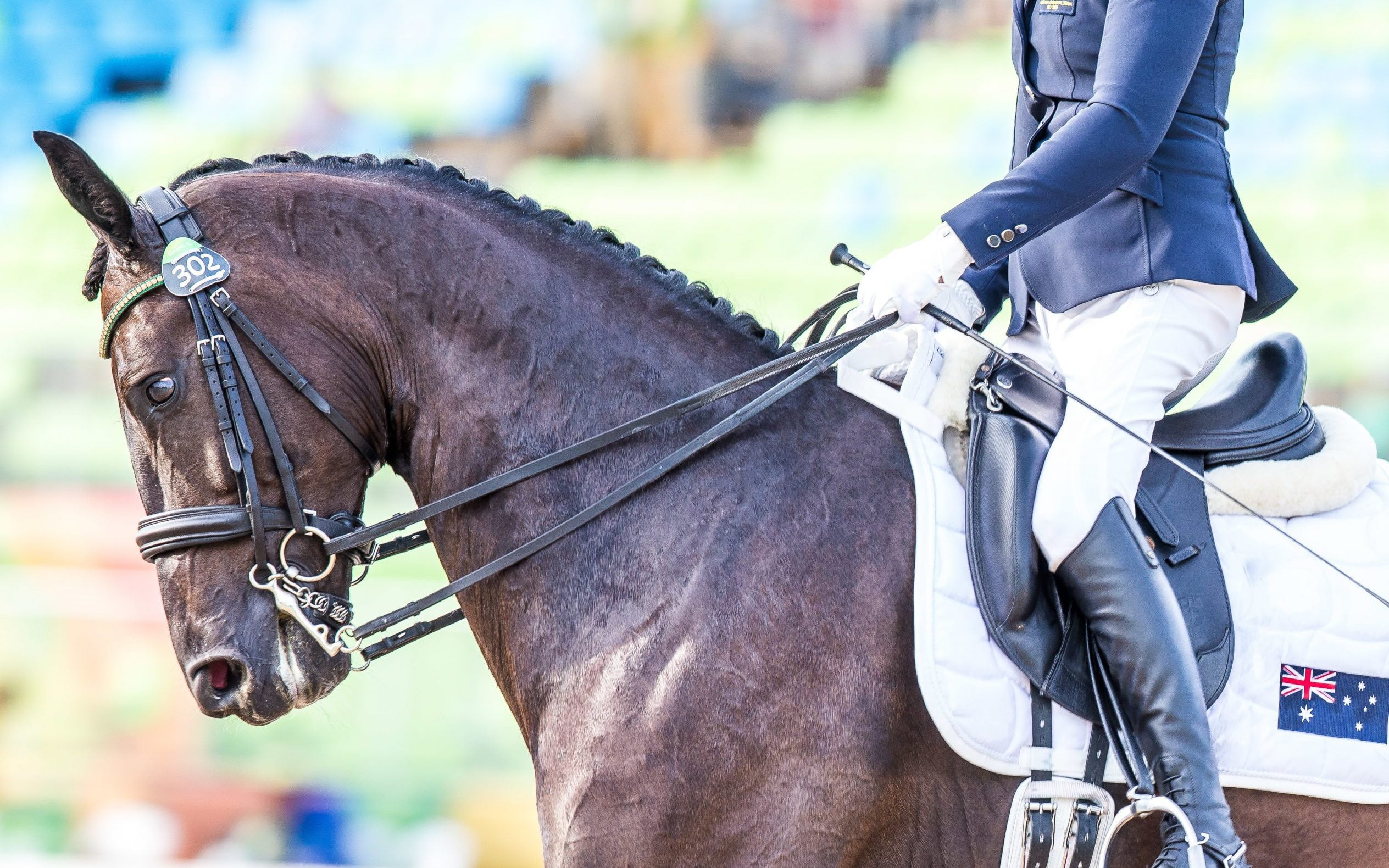 Para-equestrian classifier receives FEI nomination for International Women's Day awards