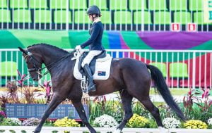Image of Para-equestrian on a horse with all her gears on